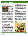 0000077650 Word Template - Page 3