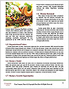 0000077650 Word Template - Page 4