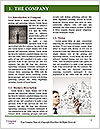0000077655 Word Template - Page 3