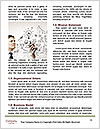 0000077660 Word Template - Page 4