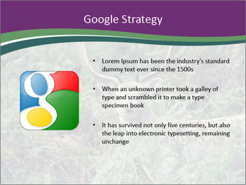 0000077661 PowerPoint Template - Slide 10