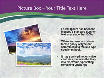 0000077661 PowerPoint Template - Slide 20