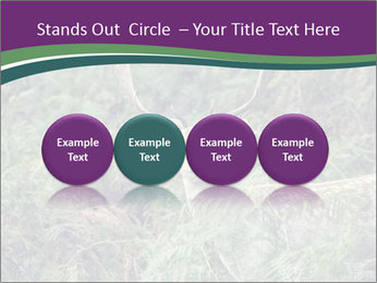 0000077661 PowerPoint Template - Slide 76