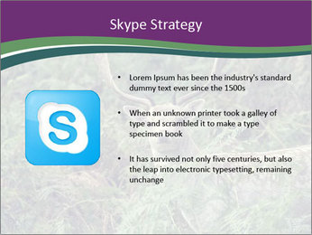 0000077661 PowerPoint Template - Slide 8