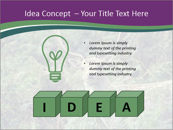 0000077661 PowerPoint Template - Slide 80