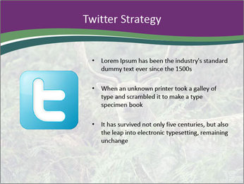 0000077661 PowerPoint Template - Slide 9