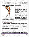 0000077662 Word Template - Page 4