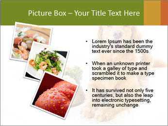 0000077663 PowerPoint Template - Slide 17