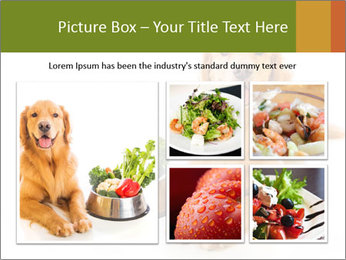 0000077663 PowerPoint Template - Slide 19