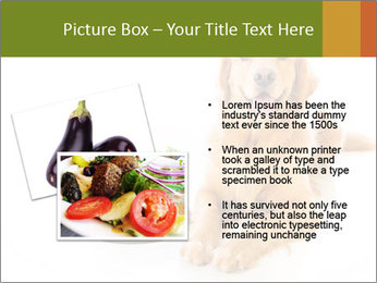 0000077663 PowerPoint Template - Slide 20