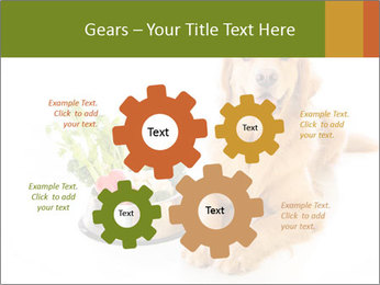 0000077663 PowerPoint Template - Slide 47