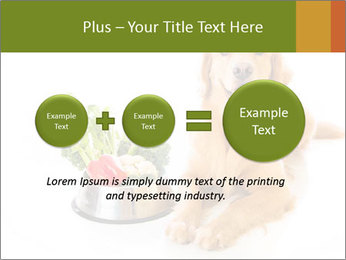 0000077663 PowerPoint Template - Slide 75