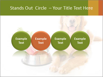 0000077663 PowerPoint Template - Slide 76