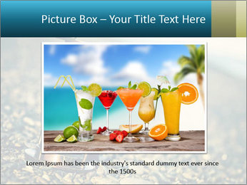 0000077664 PowerPoint Template - Slide 15