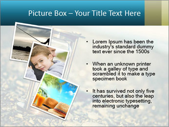 0000077664 PowerPoint Template - Slide 17