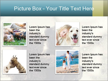 0000077666 PowerPoint Template - Slide 14