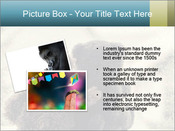 0000077666 PowerPoint Template - Slide 20