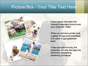 0000077666 PowerPoint Template - Slide 23