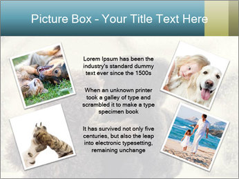 0000077666 PowerPoint Template - Slide 24
