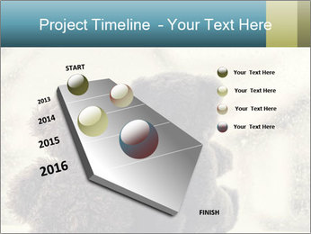 0000077666 PowerPoint Template - Slide 26