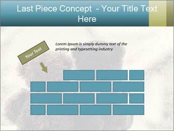 0000077666 PowerPoint Template - Slide 46
