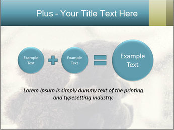 0000077666 PowerPoint Template - Slide 75