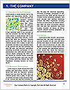 0000077668 Word Templates - Page 3