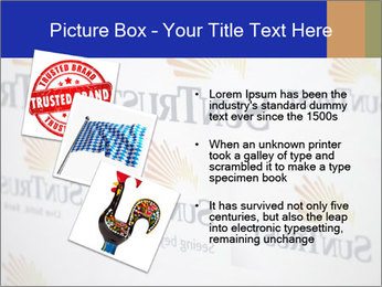 0000077669 PowerPoint Template - Slide 17