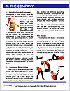 0000077678 Word Template - Page 3