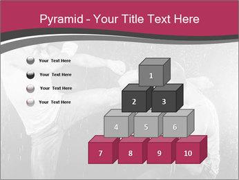 0000077681 PowerPoint Template - Slide 31
