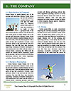 0000077686 Word Templates - Page 3