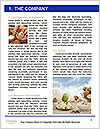 0000077691 Word Template - Page 3