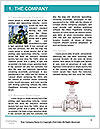 0000077696 Word Template - Page 3