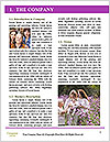 0000077705 Word Templates - Page 3