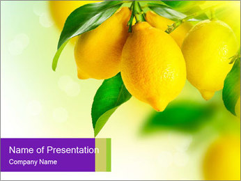 0000077712 PowerPoint Template - Slide 1