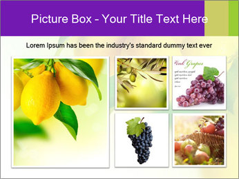 0000077712 PowerPoint Template - Slide 19