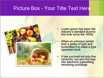 0000077712 PowerPoint Template - Slide 20