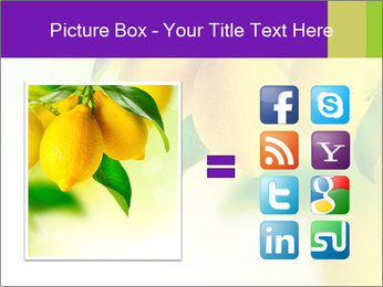 0000077712 PowerPoint Template - Slide 21