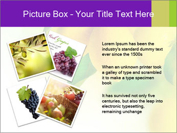 0000077712 PowerPoint Template - Slide 23