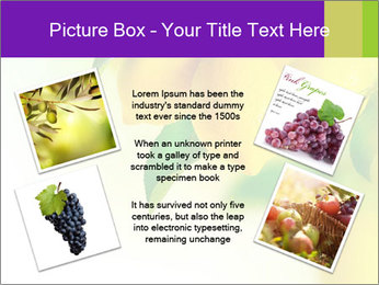 0000077712 PowerPoint Template - Slide 24