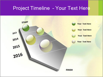 0000077712 PowerPoint Template - Slide 26