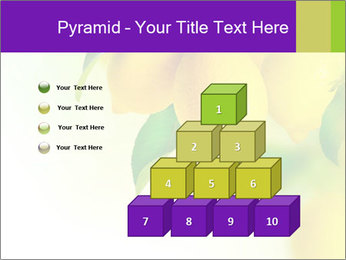 0000077712 PowerPoint Template - Slide 31
