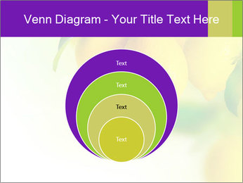 0000077712 PowerPoint Template - Slide 34