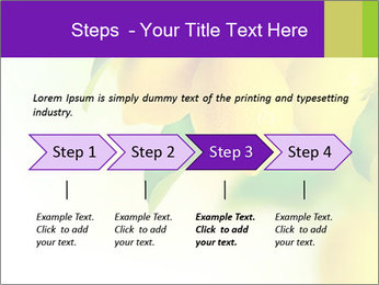 0000077712 PowerPoint Template - Slide 4