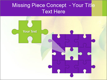 0000077712 PowerPoint Template - Slide 45