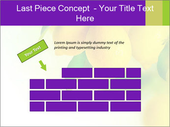 0000077712 PowerPoint Template - Slide 46