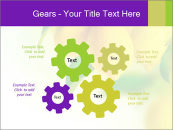 0000077712 PowerPoint Template - Slide 47