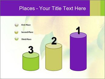 0000077712 PowerPoint Template - Slide 65