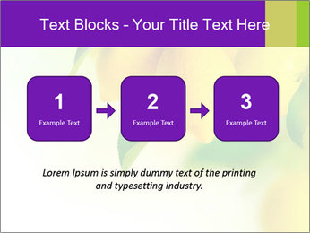 0000077712 PowerPoint Template - Slide 71