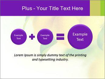 0000077712 PowerPoint Template - Slide 75
